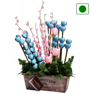 Chocolate  Bouquets - CB16