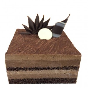 TWIN MOUSSE CAKE